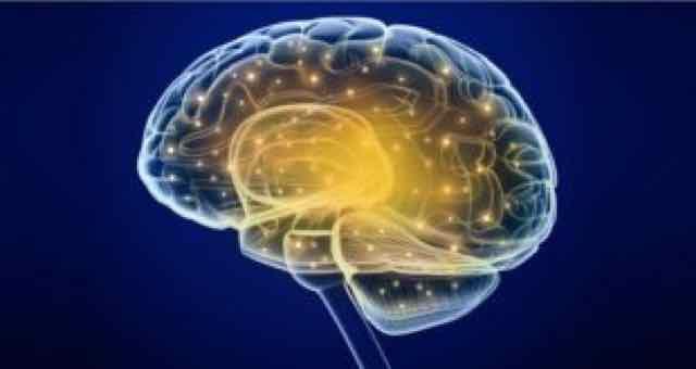 imagem 3d de um cérebro