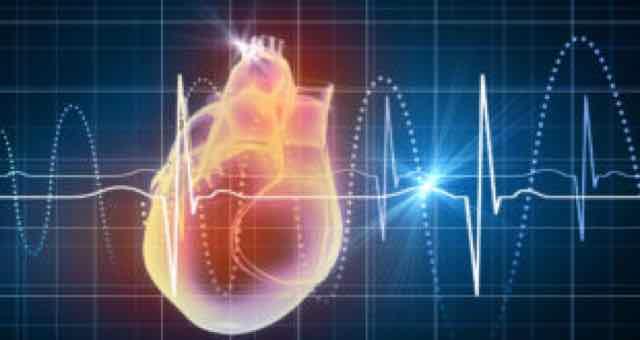 imagem 3d de um coração