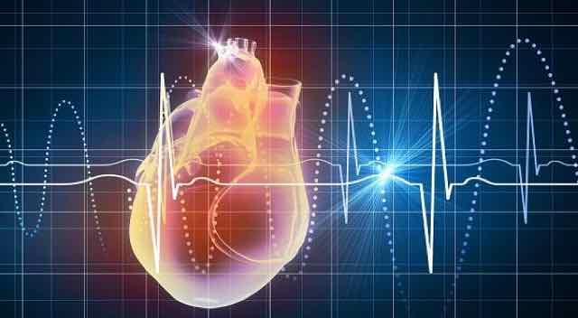 sinais vitais e um coração