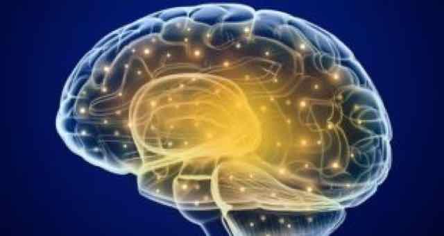 animação em 3D de cerebro humano