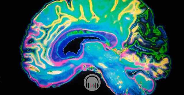 cerebro com sangramento