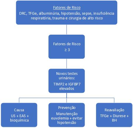 Fluxograma de avaliação do risco de IRA no per e pós-operatório