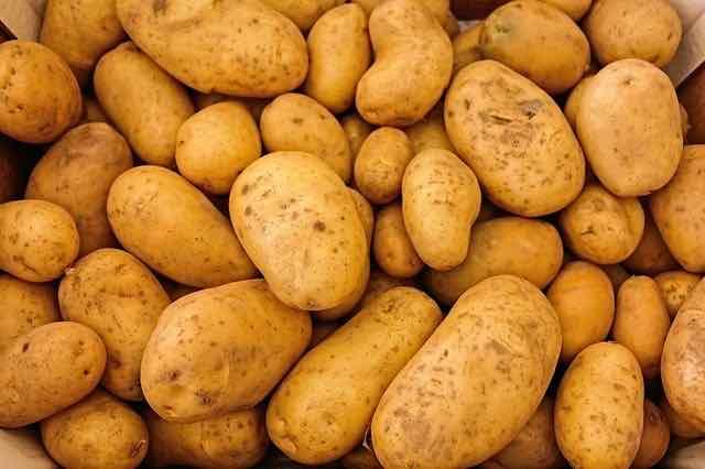 batatas diversas