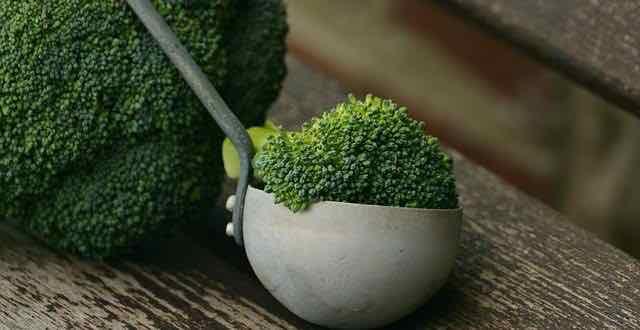 concha de cozinha com um brócolis
