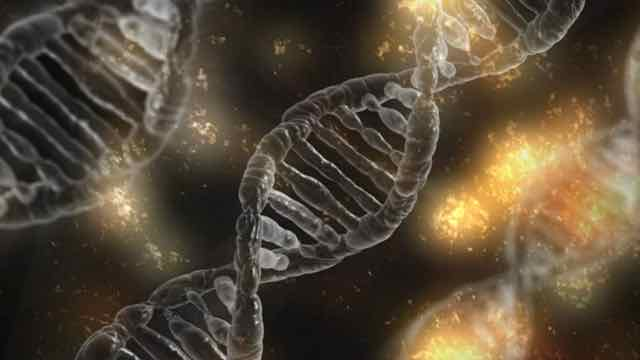 animação do DNA humano