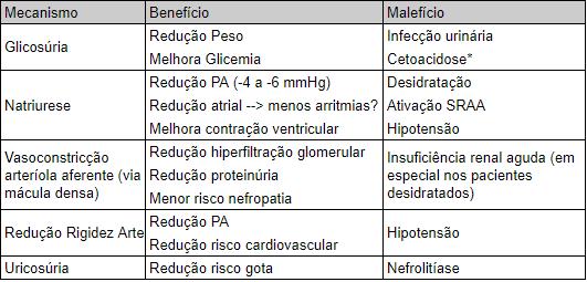 inibidores SGLT2