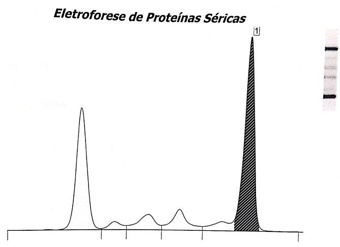 exame laboratorial