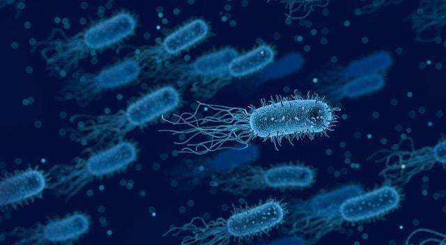 Tinta antimicrobiana