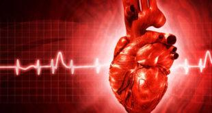 reabilitação cardíaca