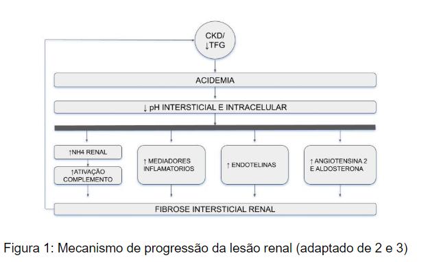 calcio en insuficiencia renal