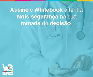 segurança whitebook