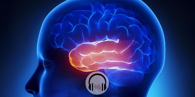 neurologia notícias