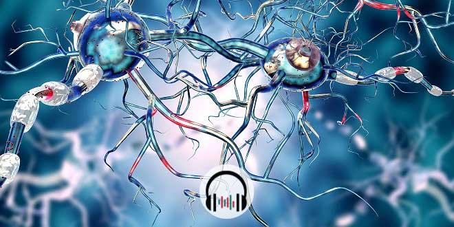 células cerebrais na doença de Huntington