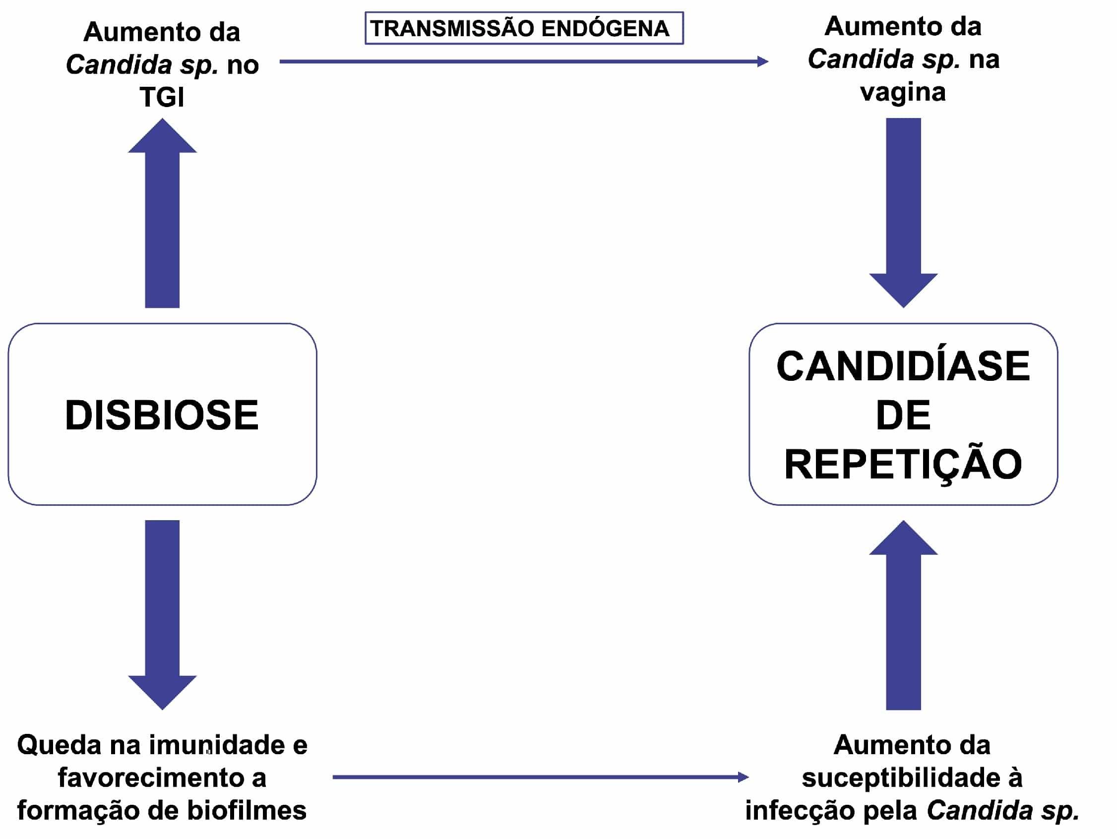 Candidíase de repetição: uso de probióticos como terapia complementar -  PEBMED
