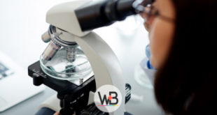 medica diagnosticando a gonorreia