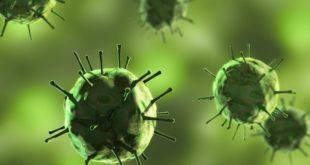 vírus em imagem digital representando o coronavírus em imagem verde