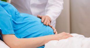 médico com a mão na barriga de paciente grávida em maca, com zika