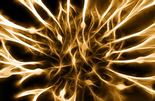 imagem de nervos do sistema nervoso, que estão sendo utilizados na pesquisa de doenças imunes
