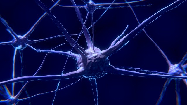 células do sistema nervoso com covid-19
