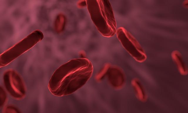 glóbulos vermelhos do sangue na hemofilia