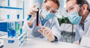 Pesquisadores analisam amostra de sangue de paciente curado da Covid-19 para produção de anticorpos neutralizantes.