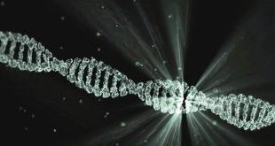 Representação gráfica de uma cadeia de DNA do vírus causador da Covid-19 sendo analisado para que possa ser realizado um exame diagnóstico com base nos dados obtidos.