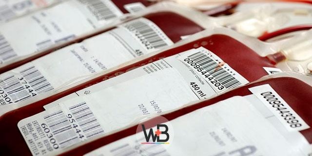 bolsas de doação de sangue