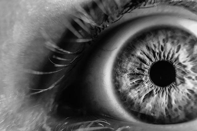 Quais os tipos de lesão melanocítica ocular?