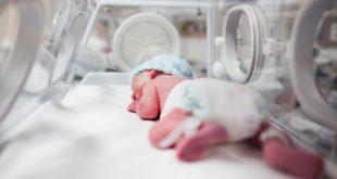 bebê em incubadora e a relação entre covid-19 e prematuros