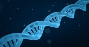imagem de DNA de deficiência de GATA2