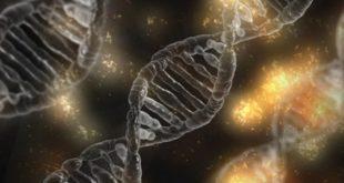 Teste genético pode ser importante para rastreio de câncer
