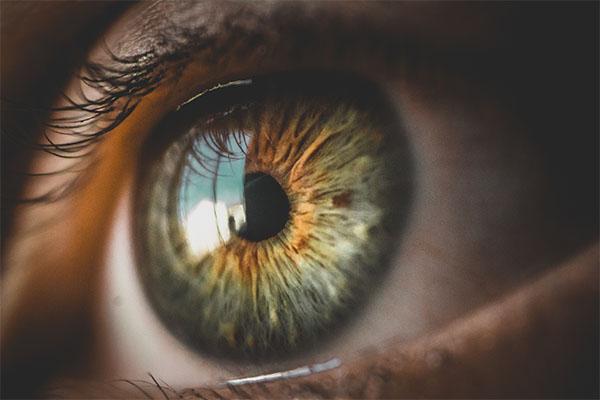 Estudo analisa fundoscopias para entender se Covid-19 gera alterações retinianas.