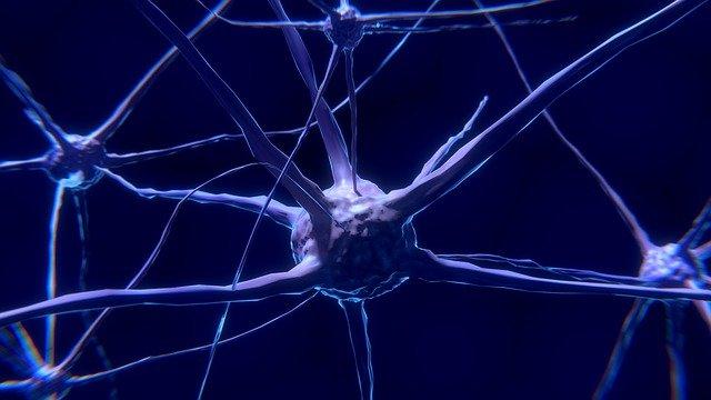 CLIPPERS é um dos distúrbios inflamatórios do sistema nervoso central.