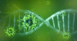 Variante da Covid-19 pode afetar testes RT-PCR