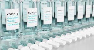 Covid-19: pacientes transplantados de medula óssea devem receber a vacina