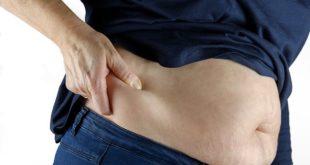 Gordura marrom: queima calorias, protege o coração e evita o diabetes