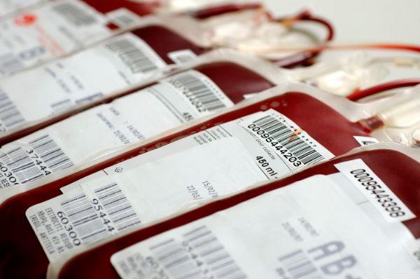 Dia 17 de abril é o Dia Mundial da Hemofilia e fazemos uma análise dos cuidados de enfermagem aos pacientes portadores da doença.